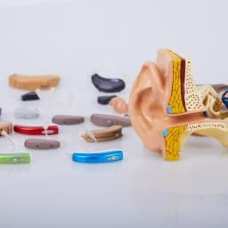 A collection of hearing devices.